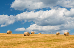 Straw bales. Stock Photography