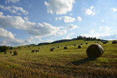 Straw Bales on the Field after Harvest, Czech repu Stock Photography