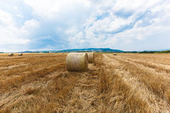 Straw bales in a field Stock Image