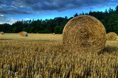 Straw bales on field Royalty Free Stock Photography