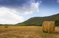 Straw-bales field with stormy sky Royalty Free Stock Images