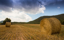 Straw-bales field with stormy sky stock image