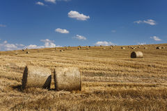 Straw bales on field Royalty Free Stock Photo