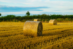 Straw bales in a field at sunset Stock Image