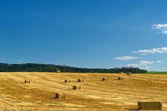 Straw bales in a field under a blue sky with white clouds royalty free stock images