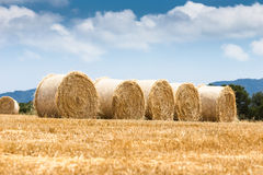 Straw bales field Royalty Free Stock Images