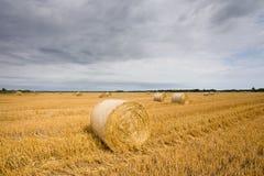 Straw bales at filed Royalty Free Stock Images