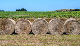 Straw bales Royalty Free Stock Images