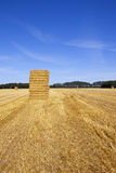 Straw bales at harvest Stock Image