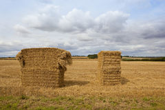Straw bales at harvest time Royalty Free Stock Photography
