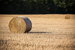 Straw bales on a harvested cereal field Royalty Free Stock Photography