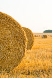 Straw bales. Harvested field with straw bales Royalty Free Stock Photos