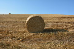 Straw bales on harvested field with  a hay bales  in horizon. And blue sky Royalty Free Stock Photo