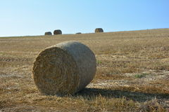 Straw bales on harvested field with  many hay bales  in horizon Stock Photos
