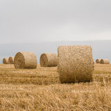 Straw bales on harvested field Stock Photography