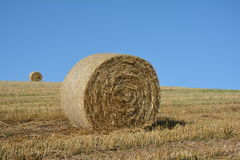 A straw bales and a hay ball in the horizon on harvested field. A straw bales in front and a hay ball in the horizon on harvested field with blue sky royalty free stock photo