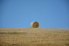 A straw bales  in the horizon on harvested field. A straw bales in horizon on harvested field with blue sky Stock Photography