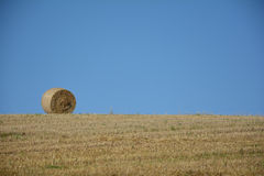 A straw bales in the horizon on harvested field. A straw bales in horizon on harvested field with blue sky royalty free stock photo