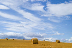 Straw Bales In Prairie Stock Images