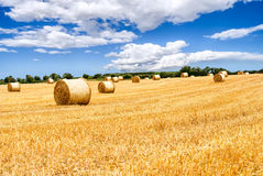 Straw bales in irish countryside Stock Image