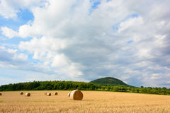 Straw bales in the meadow Royalty Free Stock Photography