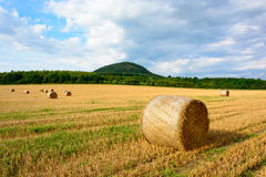 Straw bales in the meadow Stock Photo