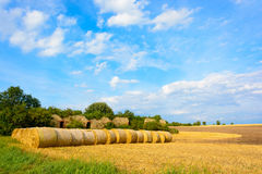 Straw bales in the meadow Royalty Free Stock Images
