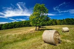 Straw Bales on the Meadow Royalty Free Stock Images