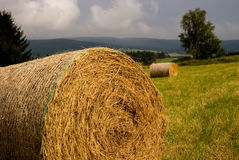 Straw bales an a meadow. Summer in the countryside Stock Photography