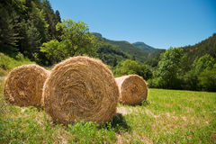 Straw bales. In the mountains meadow Royalty Free Stock Photography