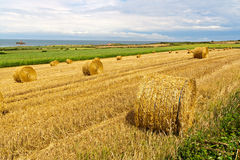 Straw Bales near the Sea in Normandy Royalty Free Stock Images