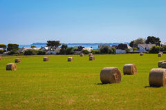 Straw bales and ocean Stock Photos