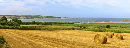 Straw Bales Panorama near the Sea Stock Images