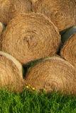 Straw bales pile Stock Image