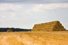 Straw bales on a pile Royalty Free Stock Image