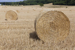 Straw bales in Sarthe department Royalty Free Stock Image