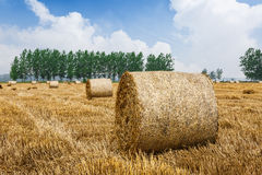 Straw bales Scenery in the country farm Stock Photography