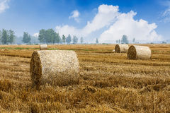 Straw bales Scenery in the country farm Royalty Free Stock Photo
