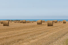Straw bales at the sea Stock Photography