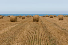 Straw bales at the sea Royalty Free Stock Images