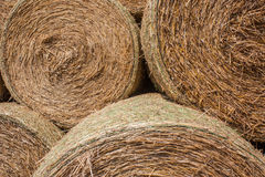 Straw bales. Some of the bale from grain stacked one on another. The view from up close Royalty Free Stock Photos