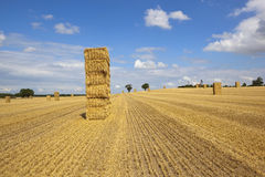 Straw bales and stubble Stock Image