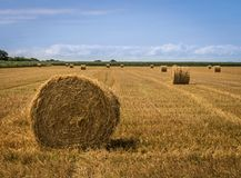 Straw bales at field after harvest royalty free stock photo