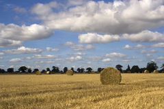 Straw bales in Suffolk Royalty Free Stock Photo