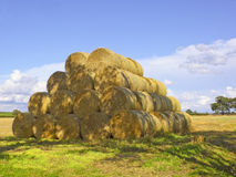Straw bales in summer Stock Images