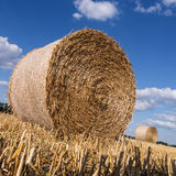 Straw bales in summer Stock Photography