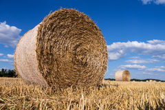 Straw bales in summer Royalty Free Stock Photography