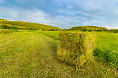 Straw bales in summer Royalty Free Stock Photos