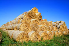 Straw bales in the sunny day Royalty Free Stock Images