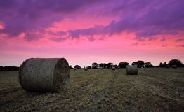 Straw Bales at sunset Royalty Free Stock Image